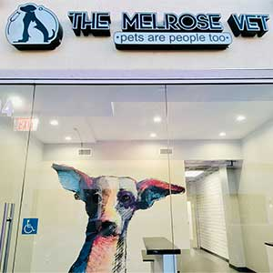 The Melrose Vet Appointment